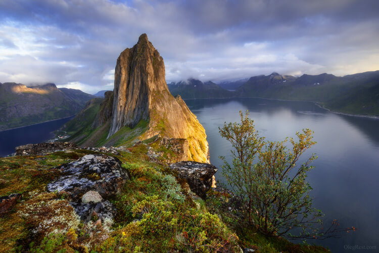Oleg Rest Senja, Norway