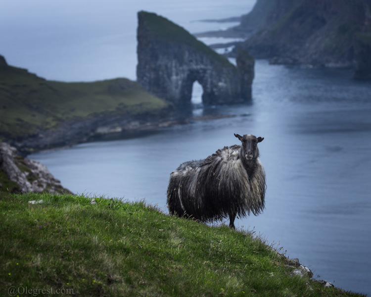 Oleg Rest Faroe Islands